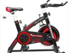 力动动感单车家用静音智能室内健身车健身器材 TX20