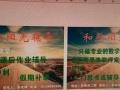 长重庆师范大学毕业老师专业中小学数学辅导。保证有实际效果