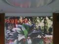 LED显示屏生产厂家,租赁屏,全彩屏,酒吧屏