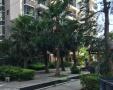 市中心 大润发旁 蓝天大厦 2室2厅 可短租3个月