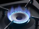 燃料灶具 無醇燃料