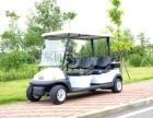 长沙卓越电动高尔夫球车电动观光车2座,4座,6座,8座图片