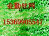 河北厂家专业生产建筑工地防尘网 绿色聚乙烯盖土网 遮阳网