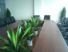 重慶植物租賃,植物墻,仿真植物,假山設計制作