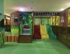 湖南组合滑梯厂家/长沙组合滑梯设备/长沙组合滑梯加盟