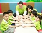 深圳婴幼儿幼小衔接,思维能力培训,脑力开发培训
