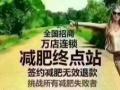 尚赫国际减肥瘦身连锁机构