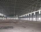 大良全新钢结构,中高10米,可分租厂房实用光线好