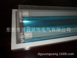 双管LED喷粉直边净化灯具生产|豪华型LED净化灯生产