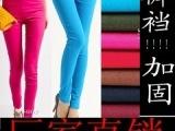 韩国时尚高腰糖果色铅笔裤均码超弹力彩色打底裤九分铅笔裤批发