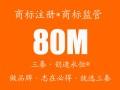 北京商标注册 商标代理 国际商标马德里注册人