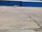 平桥区水泥厂附近 厂房 500平米
