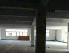 天山北路宏元厂房10楼 包物业管理 有客梯有货梯