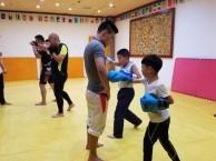 中小学成人搏击跆拳道拳击散打格斗武术培训石景山博雄拳击馆