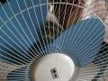 家用电暖器、电风扇(九成新)