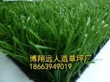 省足球场专用人造草坪