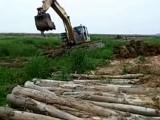宝鸡渭滨水上挖掘机租赁