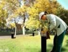 泉州惠安小花家政服务第一专业日常保洁 家庭清洗