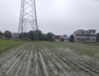 农业用地 土地 666平米