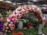 北京展會花卉短租,花卉日租賃