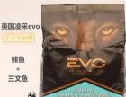 99成新美国原装进口凌采EVO 全期猫粮150