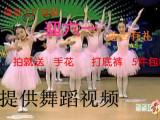少儿追梦舞蹈服装 儿童演出服 粉色公主裙 蓬蓬纱裙一件代发现货