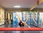 双井广渠门 方庄 少儿舞蹈芭蕾小班教学 基本功特长生班