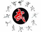 杭州武术培训,双节棍培训,空翻特技,功夫培训,赛事指导