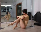 鄂州0基础成人舞蹈教练职业培训 聚星钢管舞爵士舞