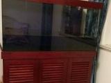 出售1个1.2米超白底滤鱼缸