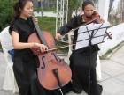 奉贤区小黑喵钢琴电子琴小提琴大提琴家教教学
