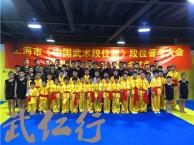 上海成人散打格斗教学培训