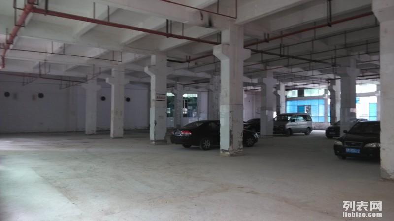 龙华个人红本厂房招租 独院2万平米 (不接受物业)