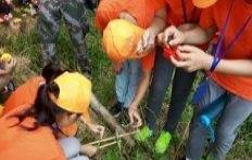 秋季主题亲子活动-荒野求生、小小印第安