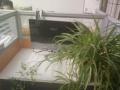 办公桌|隔断屏风组合4人位|时尚简约员工桌|职工位