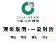 中国人寿车险办理,代审车等业务