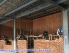 怀柔房屋翻新 别墅新建扩建厂房地下室改造土建施工队