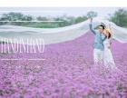 海景婚纱摄影旅拍