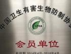 帮龙除虫,台州专业灭鼠 灭蟑螂 灭白蚁 灭除跳蚤
