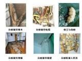 嘉兴平湖市家庭小区住宅灭鼠白蚁防治灭蟑螂除四害