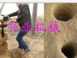 双人植树挖坑机 大马力汽油挖坑机 耐用实用挖坑机厂家报价