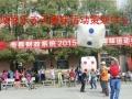 益阳银行趣味运动会,政府机关,系统职工趣味运动会