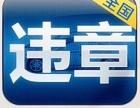 云南昆明违章咨询罚款代缴汽车过户车辆年检异地年检无车提档