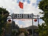 深圳较大的生态农场花田盛世生态园