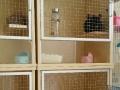 龙猫柜笼标笼转让