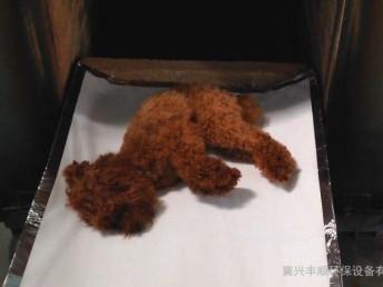上海浦東新區寵物殯葬寵物安樂服務周浦鎮動物火化電話上門服務