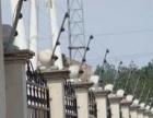 光纤熔接光纤敷设电子围栏红外对射门禁等弱电工程