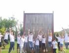 团队集体活动,团队文化建设,户外体验式拓展培训