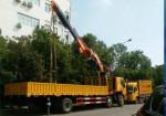 武汉起重吊装,搬家搬厂,设备吊装专家,吊车叉车出租