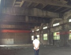 铁西800平厂房出租 10吨吊车 独门独院